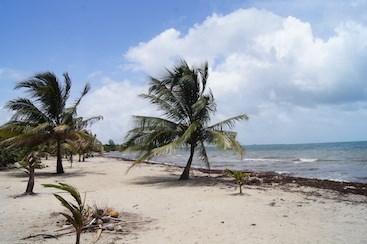 Cocoplum, Placencia Village - BLZ (photo 1)