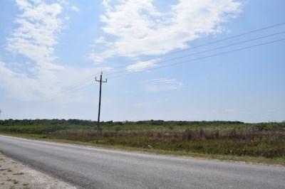 Philip Goldson Highway, Corozal District - BLZ (photo 5)
