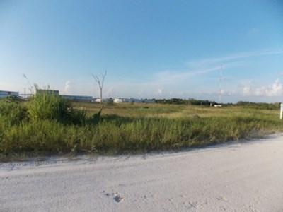 Corozal Free Zone, Santa Elena - BLZ (photo 3)