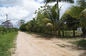 Mile 2 Sibun Road , Freetown Sibun / Hattieville - BLZ (photo 5)