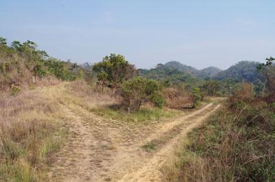 Lomas De Las Flores, Belmopan - BLZ (photo 1)