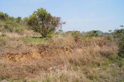 Lomas De Las Flores, Belmopan - BLZ (photo 5)