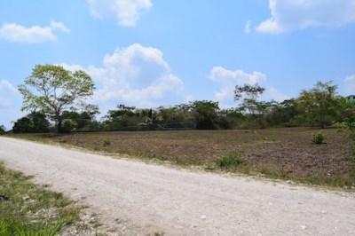 Vista Maya, San Ignacio - BLZ (photo 1)