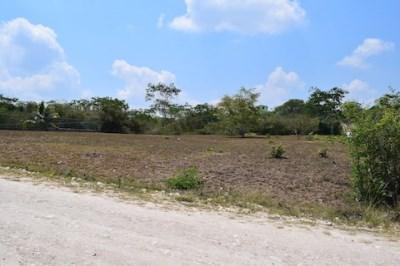 Vista Maya, San Ignacio - BLZ (photo 2)