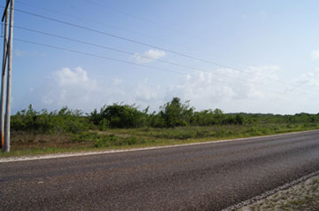 Mile 12, George Price Highway (western Highway) - BLZ (photo 4)