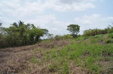 Vista Maya, San Ignacio Town - BLZ (photo 4)
