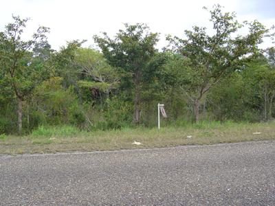 Mile 33, Northern Highway, Biscayne - Crooked Tree Village - BLZ (photo 2)