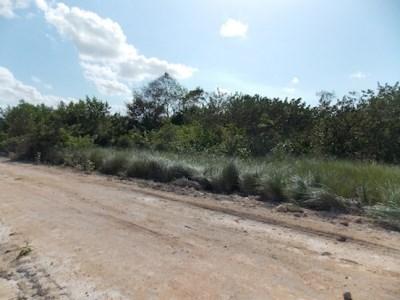 Mayan Sands, Corozal Town - BLZ (photo 1)