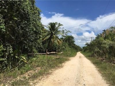 Freetown Sibun, Hattieville Village - BLZ (photo 2)