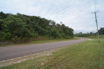 Blue Creek Country Estates, Blue Creek Road, Blue , Blue Creek - BLZ (photo 3)