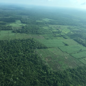 Bomba, Belize Rural North 1 - BLZ (photo 2)