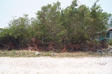 San Pedro, Ambergris Caye - BLZ (photo 3)