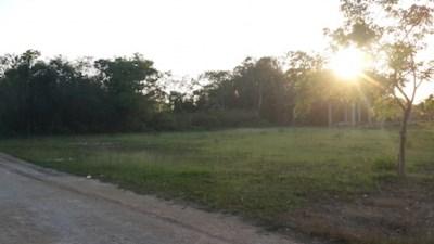 Consejo Road, Finca Solana Area - BLZ (photo 1)