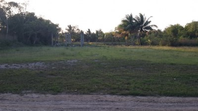 Consejo Road, Finca Solana Area - BLZ (photo 2)