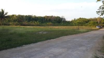 Consejo Road, Finca Solana Area - BLZ (photo 4)