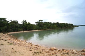 Warrie Bight, Chetumal Bay - BLZ (photo 4)