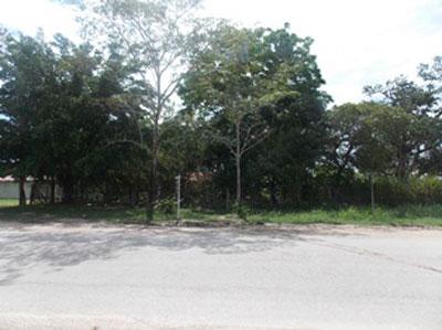 Mile 54 Philip Goldson Highway, Corozal - Orange W, Orange Walk Town - BLZ (photo 3)