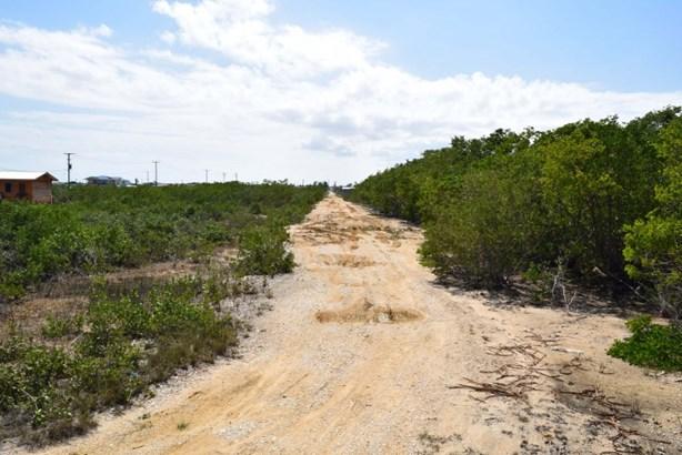 Belize, Belize District - BLZ (photo 5)