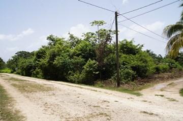 Butte Rows Road, Belmopan - BLZ (photo 3)
