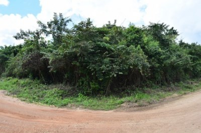 Half Mile South Of George Price Highway, Camalote Village - BLZ (photo 2)
