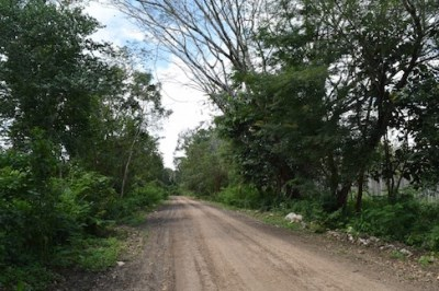 Half Mile South Of George Price Highway, Camalote Village - BLZ (photo 5)