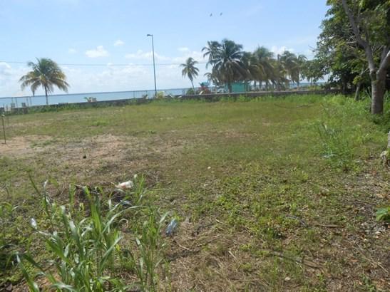 6th Street North, Corozal Town - BLZ (photo 4)