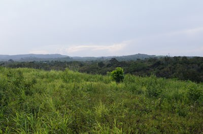 Mopan River - Benque Viejo, Benque Viejo Del Carmen - BLZ (photo 2)