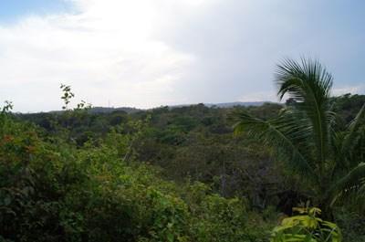 Mopan River - Benque Viejo, Benque Viejo Del Carmen - BLZ (photo 4)