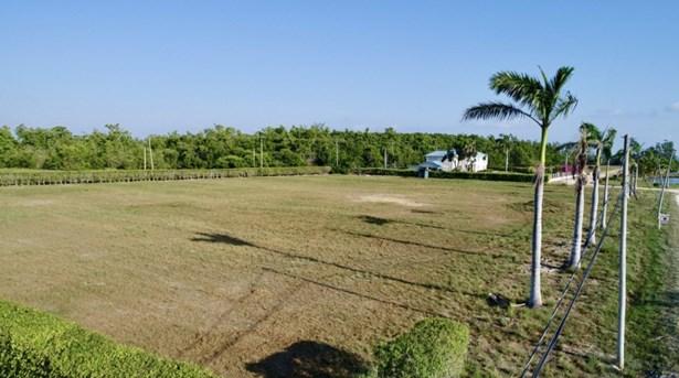 Ladyville Near Mile 7, Phillip Goldson Highway, Cloverleaf Estate - BLZ (photo 5)