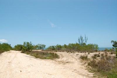 Turtle Crescent (east), Vista Del Mar-ladyville - BLZ (photo 3)