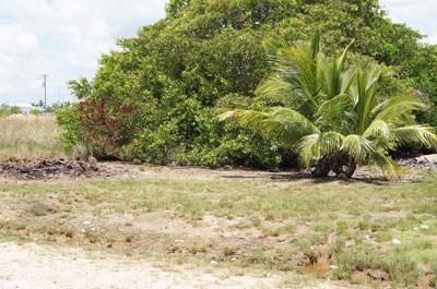 Phase 2, Vista Del Mar, Ladyville - BLZ (photo 3)