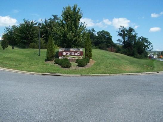 Residential - Single Family - Blue Ridge, VA (photo 2)