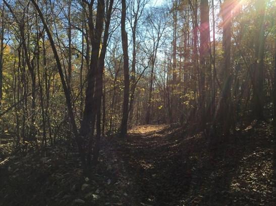 Undeveloped - Bedford, VA (photo 2)