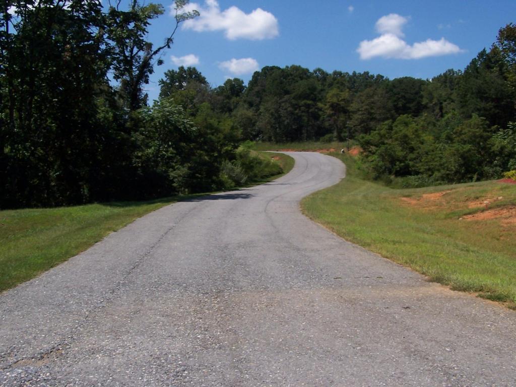 Residential - Single Family - Blue Ridge, VA (photo 5)