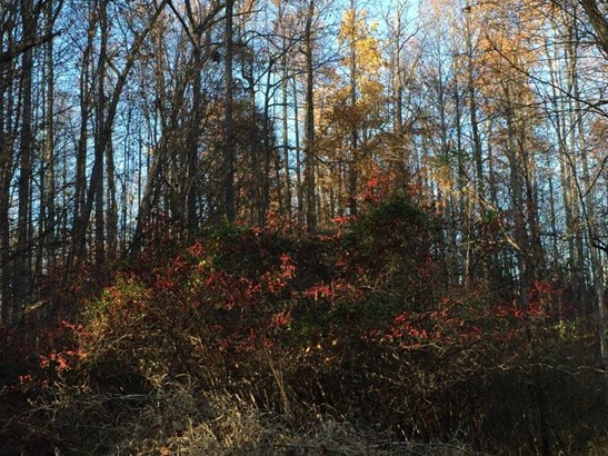 Land - Bedford, VA (photo 3)