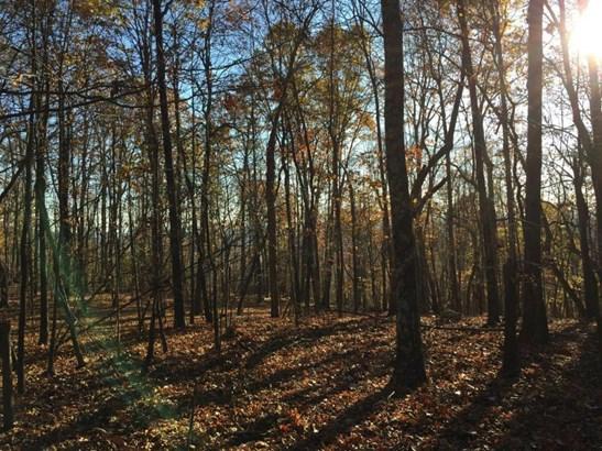 Land - Bedford, VA (photo 5)