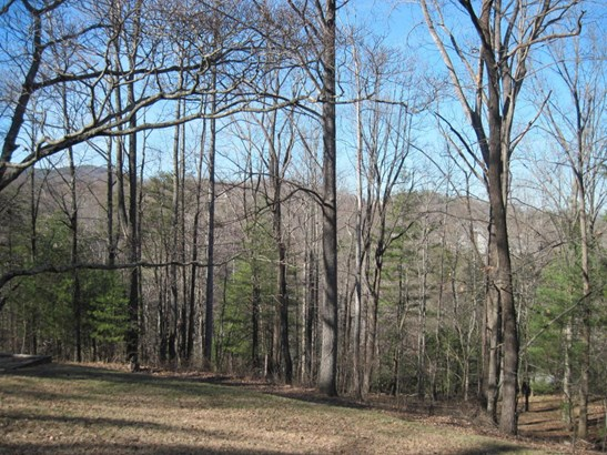 Undeveloped - Roanoke, VA (photo 1)