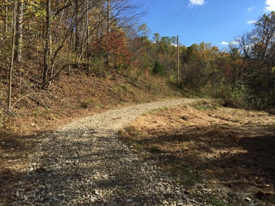Undeveloped - Boones Mill, VA (photo 3)