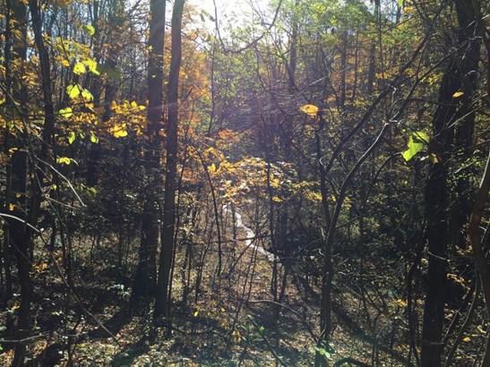 Undeveloped - Boones Mill, VA (photo 4)
