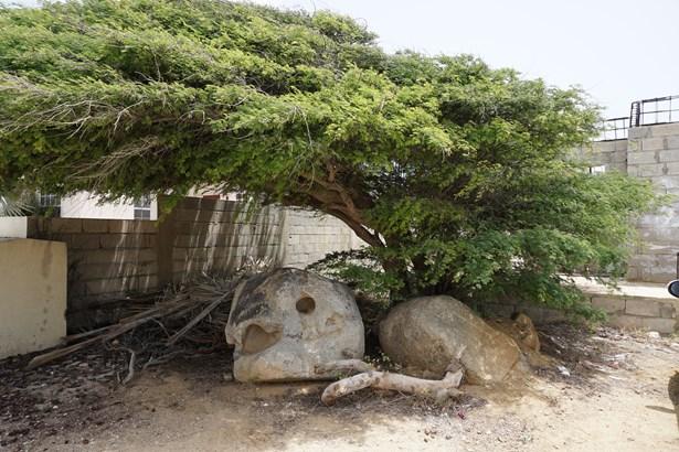 Casibari Gardens And Stones, Casibari, Aruba, Paradera - ABW (photo 4)