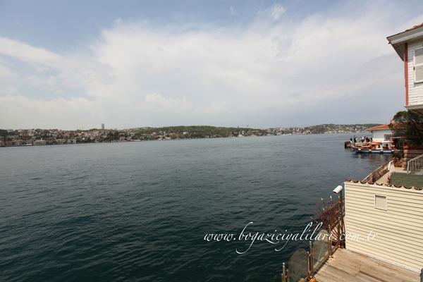 Istanbul - TUR (photo 3)