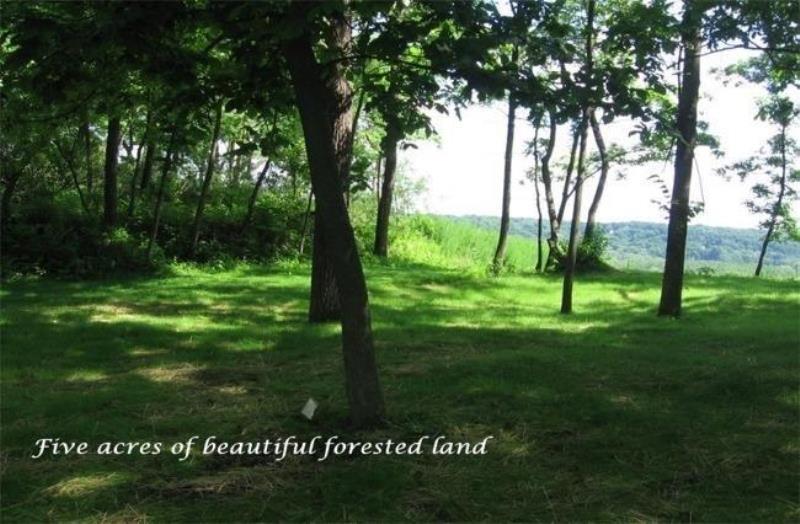 Vacant Land - Fontana, WI (photo 5)