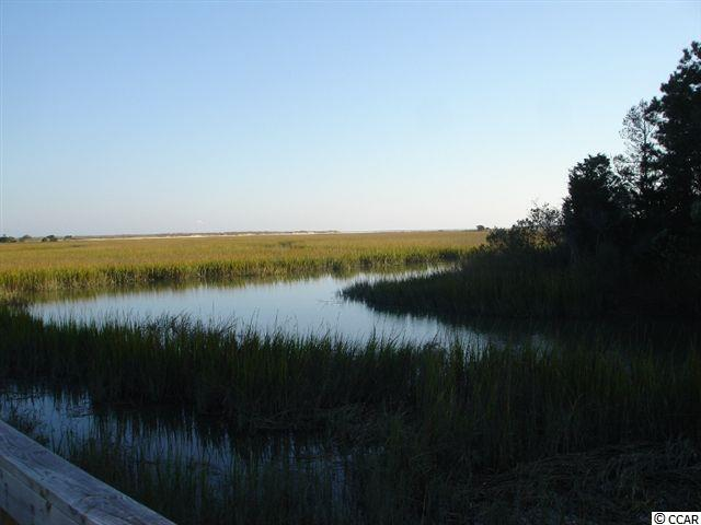 RESIDENTIAL LOT - Pawleys Island, SC (photo 1)