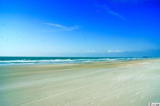 Raised Beach, SEMI-DETACHED - Garden City Beach, SC (photo 3)