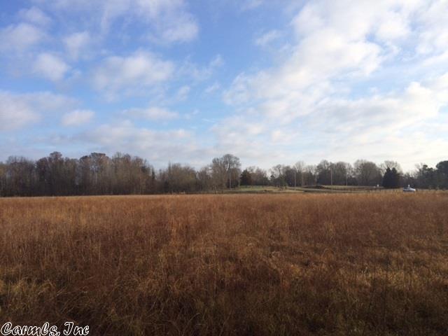 Farm or Ranch Land - Roland, AR (photo 1)