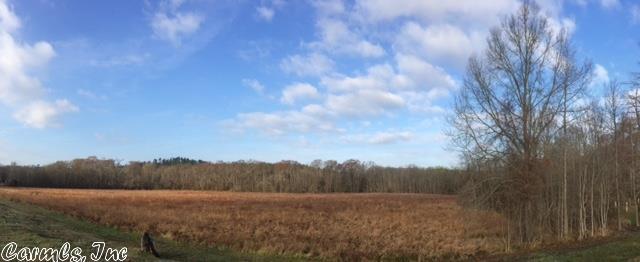 Farm or Ranch Land - Roland, AR (photo 2)