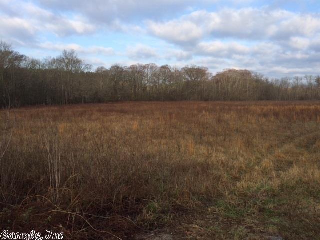 Farm or Ranch Land - Roland, AR (photo 3)