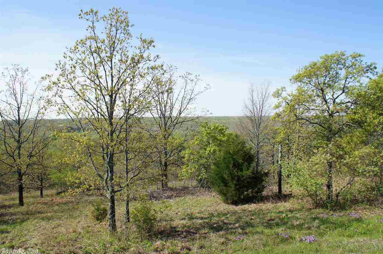 Subdivision Lot - Cabot, AR (photo 4)