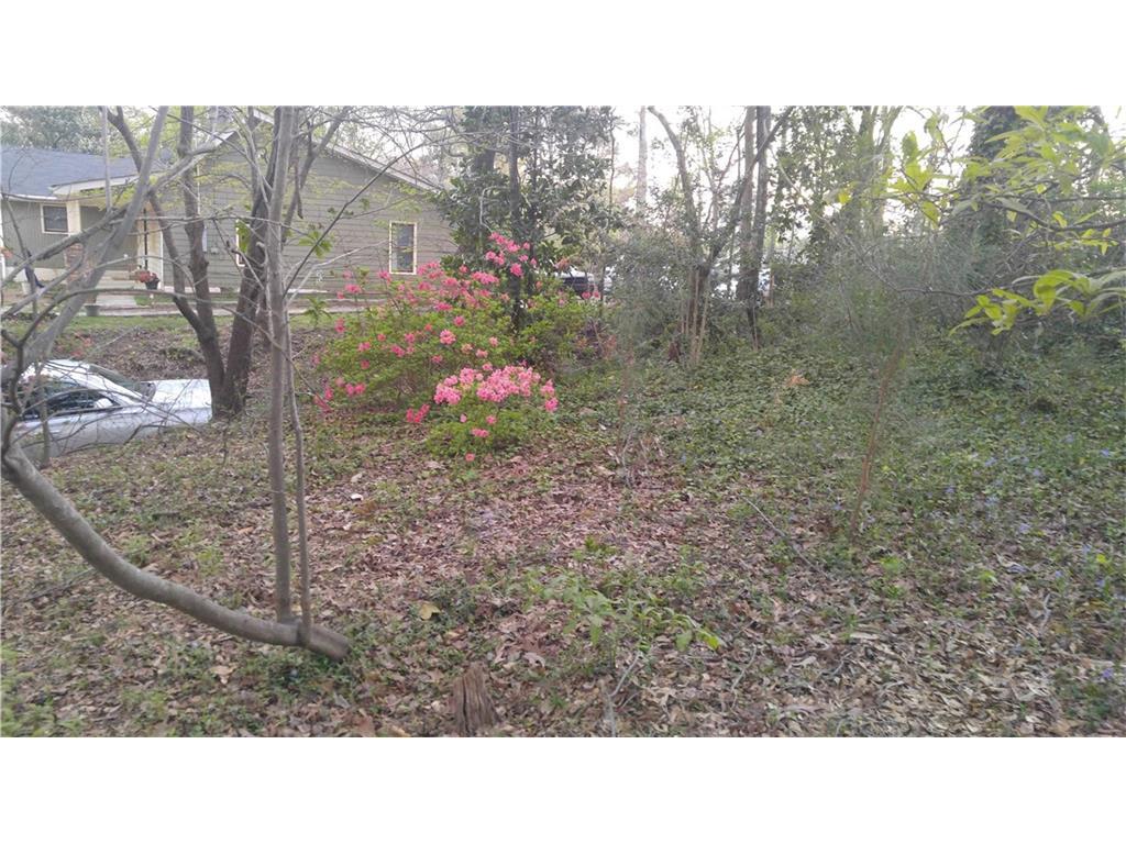 Land/Farm - Atlanta, GA (photo 4)