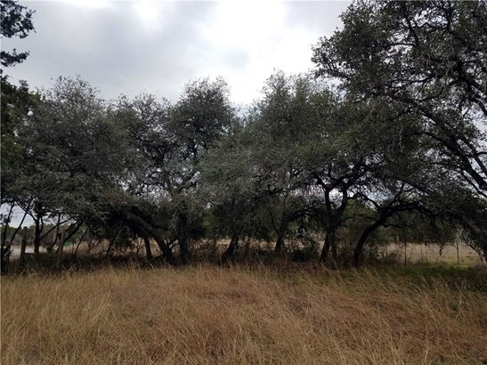 18001 Fm 150 W, Driftwood, TX - USA (photo 3)